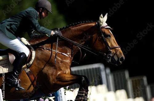 Cadres-photo bureau Equitation jumpnig