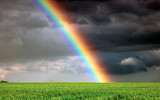 Fototapeta Rainbow - arc-en-ciel