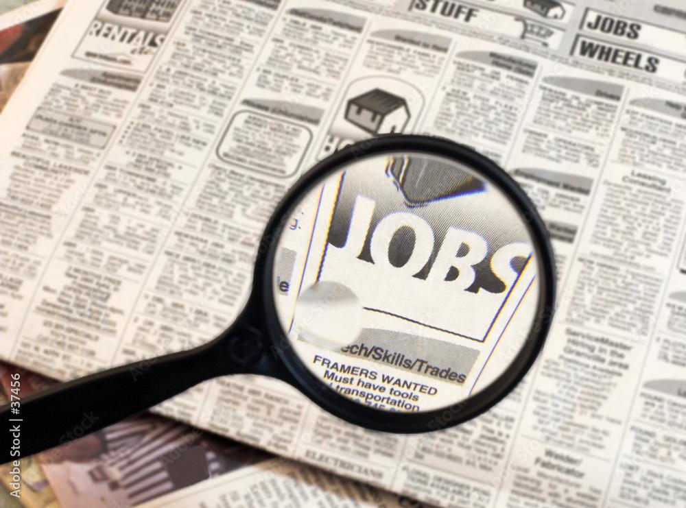 Fototapeta job search