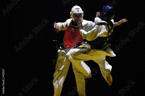 Obrazy Taekwondo   combat-de-taekwondo