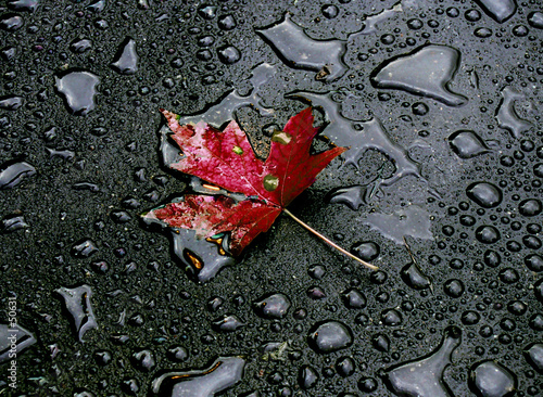 po-deszczu