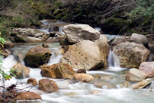 Fototapeten Forest river aqua
