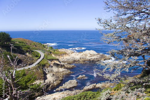 Fotografie, Obraz  Côte Ouest Spojené státy americké pres de Carmel