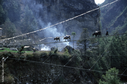 Wall Murals Nepal suspension bridge