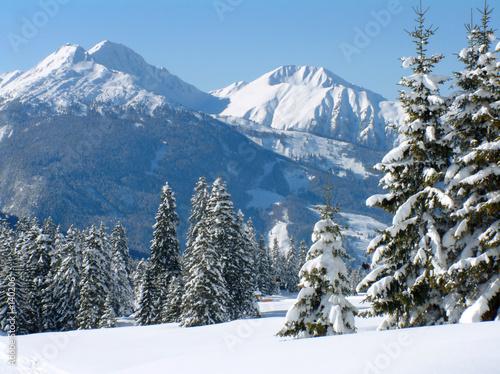 scena-sniegu-alpejskiego