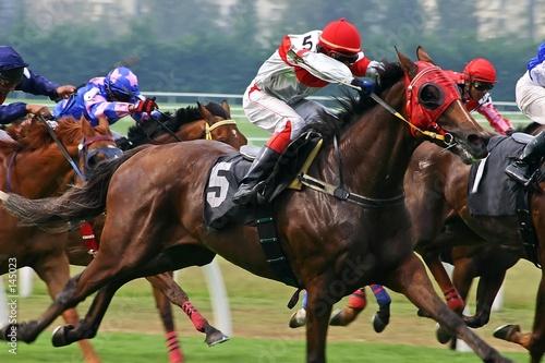 Tuinposter Paarden horse racing