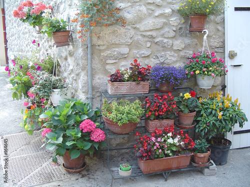 Photo Stands Stairs pots de fleurs
