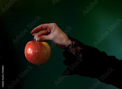 Fotografie, Obraz  poison apple