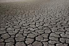 Dry Mud Field