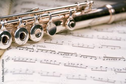 Stampa su Tela flute across a musical score
