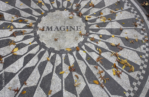 Photo  strawberry fields