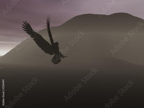 Foto op Plexiglas Volle maan night eagle