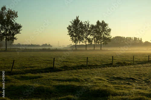 Photo morning landscape