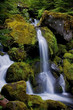 canvas print picture - waterfall 4