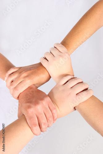Fototapety, obrazy: interlocked hands