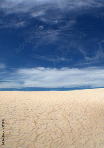 Canvas Prints Countryside rippled sand