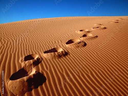 Foto-Vorhang - footprints going over the sand. (von ikostudio)
