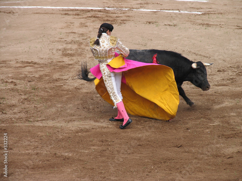 Poster Bullfighting woman fighting bull