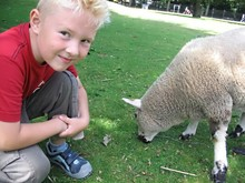 Child And Lamb, Ecological Farm