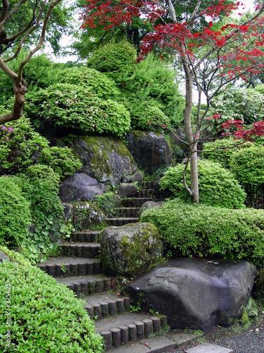 Papiers peints Jardin japanese garden in tokyo