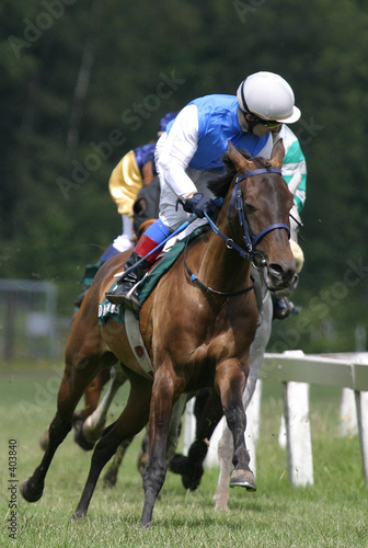 Stampa su Tela horse racing