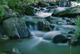 Górski strumień w lesie
