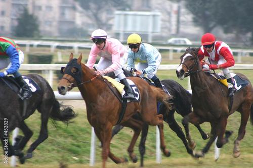 Fototapeta course de chevaux