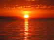 Leinwandbild Motiv crazy red sunset on the ocean