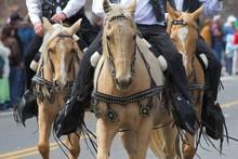 Cowboys & Horses 2