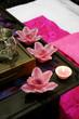 beautiful pink spa