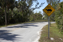 Gopher Tortoise Sign