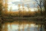 washington wildlife reserve - 511812