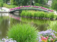The Flower Bridge