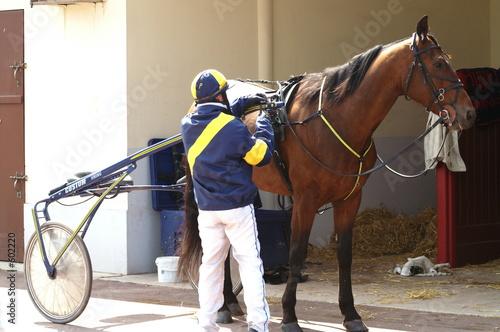 Fotografie, Obraz le jockey prépare le sulky