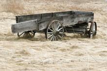Abandoned Wagon In Field