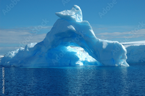 Fotografie, Obraz  iceberg in antarcic waters