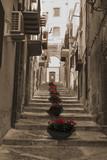 Fototapeta Na drzwi - stairs and flowers in italian village street