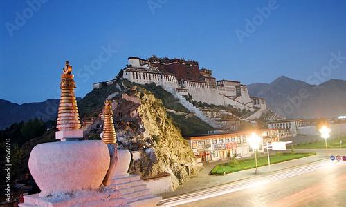 potala palace by night