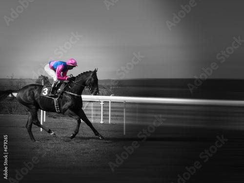 race horse Fototapet