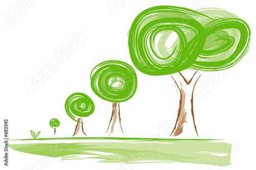 Valokuva  growing trees
