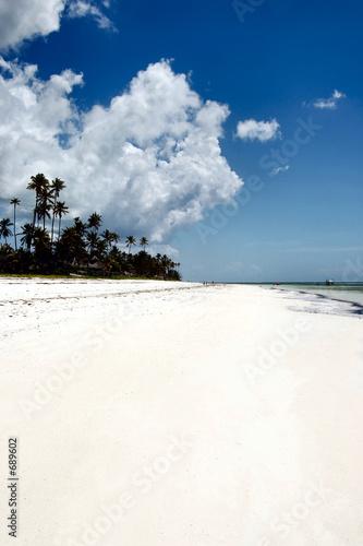 Foto-Leinwand - zanzibar beach by day, tanzania, africa