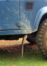 Off Road Detail