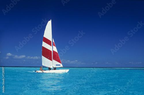 Obraz na plátně catamaran aux maldives