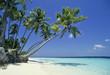 Leinwandbild Motiv maldives