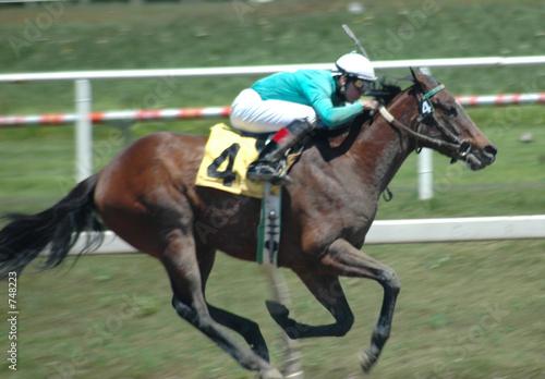 Keuken foto achterwand Paarden race horse