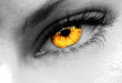 canvas print picture - gold eye