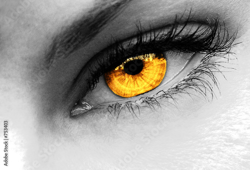 gold eye #753403