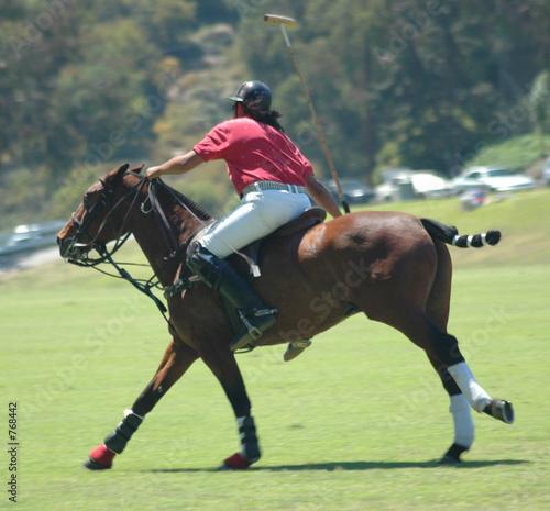 Keuken foto achterwand Paarden polo player