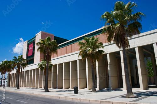 Foto op Plexiglas Historisch geb. palm trees