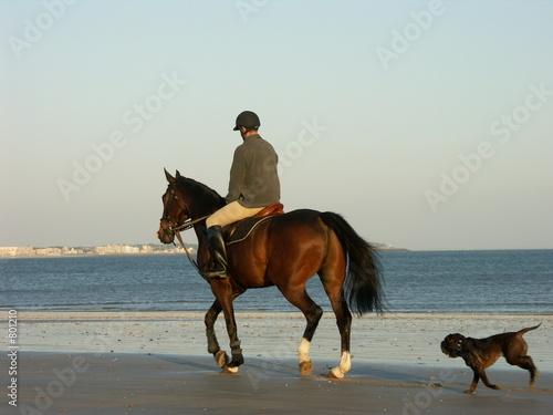 Photo  promenade à cheval sur la plage